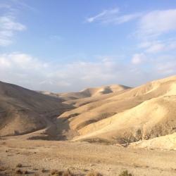 see desert